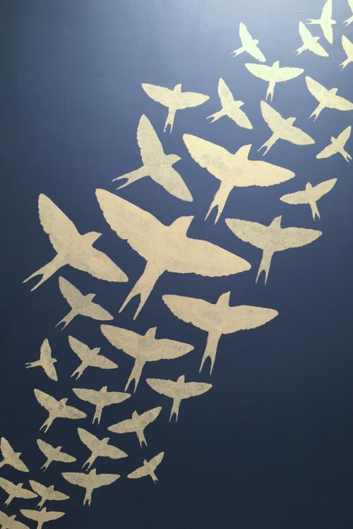 blue board bird  stencil